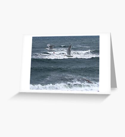 Gulls Over Waves Greeting Card