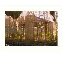 Swamp History Art Print