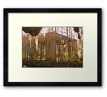 Swamp History Framed Print