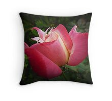 Double Delight almost open Throw Pillow