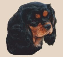 Black & Tan Cavalier King Charles Spaniel by Jenny Brice