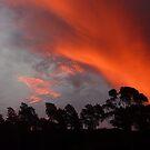 Sunset Lilydale Tasmania Feb 26 2010 by RainbowWomanTas