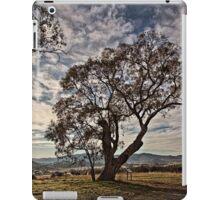 Lone tree on the road to Tidbinbilla (2) in ACT/Australia iPad Case/Skin