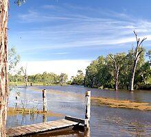 Gunbower Creek by Peter  Hughes