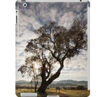 Lone tree on the road to Tidbinbilla (1) in ACT/Australia iPad Case/Skin