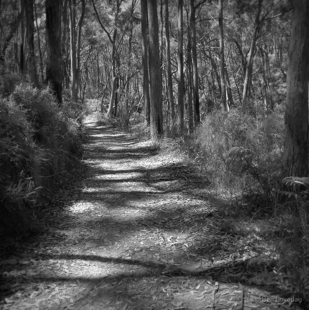 The Path Ahead by Ben Loveday