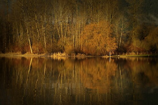 Golden Brown by Annie Lemay  Photography