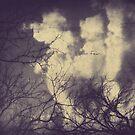 no fear. by Angel Warda