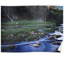 Chapman River ~ Geraldton Poster