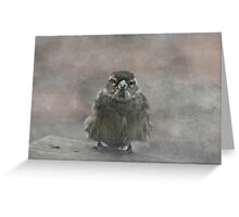 Little Sparrow Greeting Card