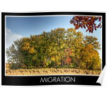 Migration with title Poster