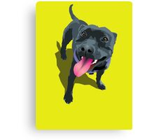 Staffy Lime Canvas Print