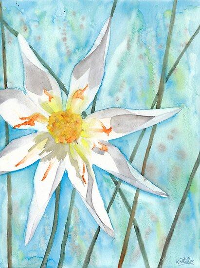 White Dahlia by Ken Powers