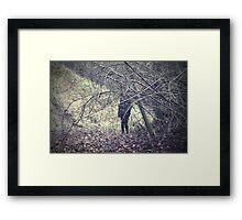 Stranger in the woods Framed Print