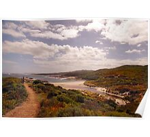 The Southern Ocean coast at Lights Beach is a wonderful vantage point Poster