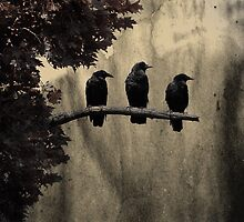 Three by gothicolors