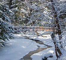 Bridge over Frozen Water by Murph2010