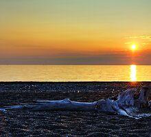 Bayfield Sunrise by Wendy  Meder