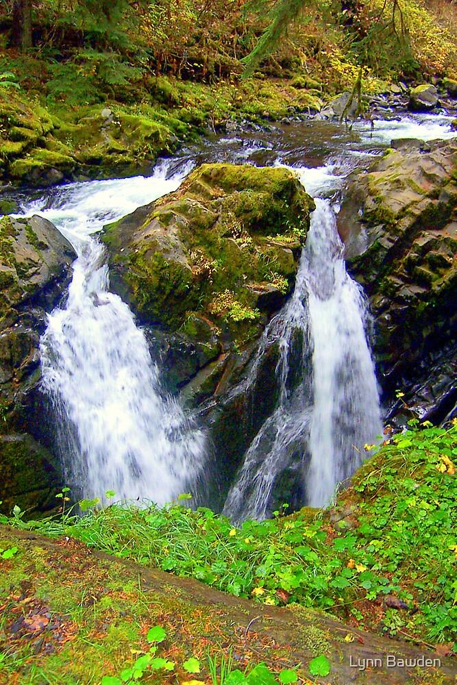 """""""Sol Duc Falls"""" by Lynn Bawden"""