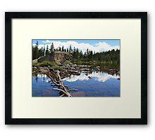 Forest Lake Framed Print