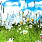 Wild Ones - Daisy Meadow by PDonovan