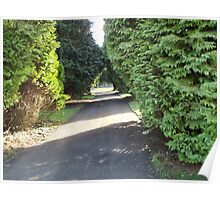 Front drive, Moorhaven formal gardens Poster