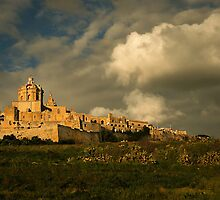 MDINA OLD CITY OF MALTA by Ronald cox
