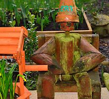 Bert the forgotten flower pot man by Stephen Frost