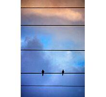 Skyline Birds Photographic Print