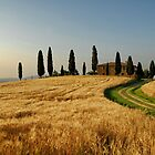Tuscany Countryside by FOTIS MAVROUDAKIS