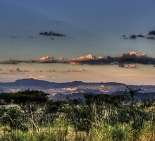 Waiting For A Superman - HDR by Margo Naude