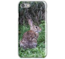 Rabbit in the Grass iPhone Case/Skin