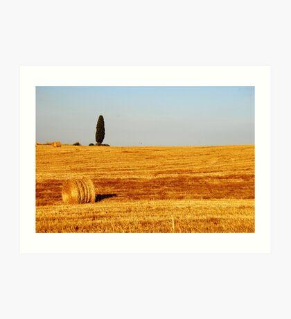 Tuscany Field Art Print