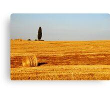 Tuscany Field Canvas Print