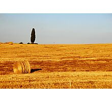 Tuscany Field Photographic Print