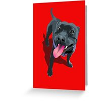 Staffie Red Greeting Card