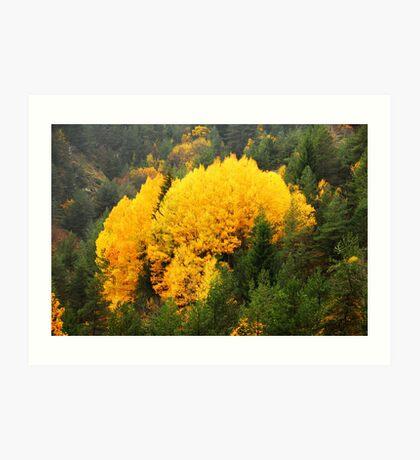 Autumn scenery Art Print