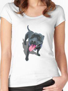 Staffy Aqua Women's Fitted Scoop T-Shirt