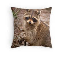 Caught In The Act - Green Cay Wetlands Throw Pillow