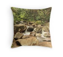 Drakensberg, South Africa Throw Pillow