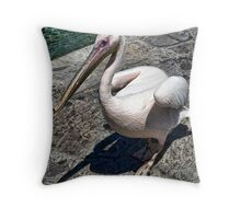 Pelican of Mykonos Island Petros the Pelican Throw Pillow