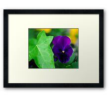 My Blue Flower Framed Print
