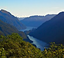 A first view of Doubtful Sound from Wilmott Pass by Odille Esmonde-Morgan
