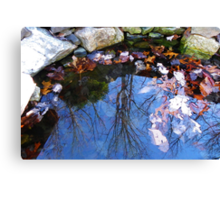 Mirror in the Pond Canvas Print
