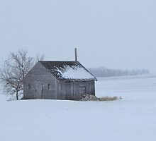 Little House on the Prairie by lorilee