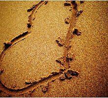 Heart left behind by wilsongrace