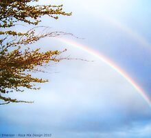 Double Rainbow 2 by rocamiadesign