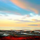 Impressions of Great Salt Lake ( 2 ) by Brian Bo Mei