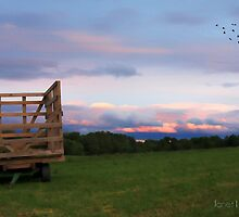 country sunset by janetlee