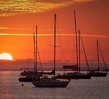 A new day - Geelong by Hans Kawitzki